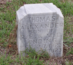 Thomas Alexander Anding