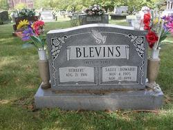 Sallie <i>Howard</i> Blevins