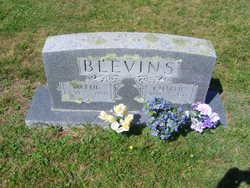 Martha Jane Mattie <i>Comer</i> Blevins