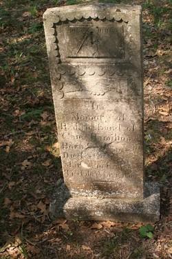 E. M. Hamilton