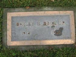 Bailey E. Bell, Jr