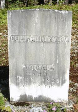 Abigail <i>Bean</i> York