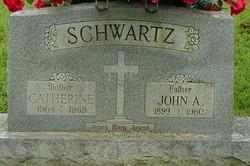 John Albert Schwartz