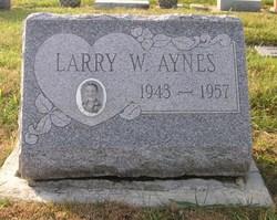 Larry W. Aynes