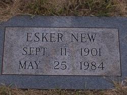 Esker New
