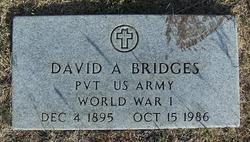 David Andrew Bridges, Sr