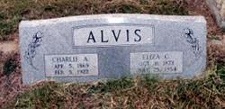Eliza <i>Collins</i> Alvis