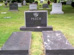 Donna Stone Pesch