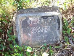 Wilbert B Mosher