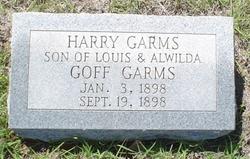 Harry Garms