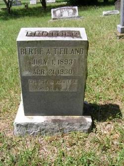 Albert T. Bertie Eiland
