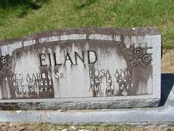 Rosa Ann <i>Hagin</i> Eiland