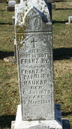 Franz Henry Haukap