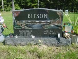 Raymond B. Bitson