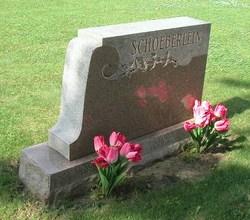 Ray R Schoeberlein