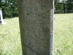 Hattie N. Allen