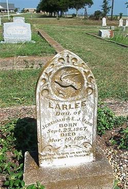 Larlee Webb