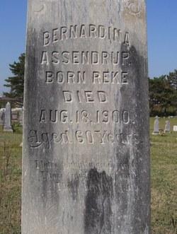 Barnadina <i>Baker</i> Assendrop