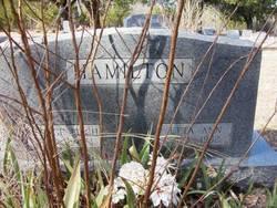 Etta Ann <i>Borrow</i> Hamilton