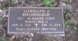 Llewellyn J Birchenough