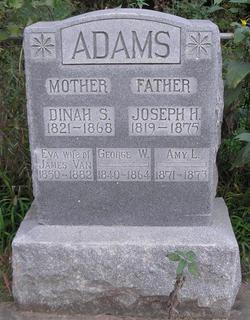 Dinah S Adams