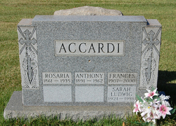 Anthony Accardi