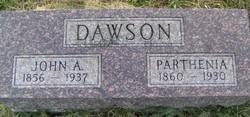 Parthenia <i>PARRICK</i> DAWSON