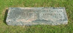 George Washington McCallister