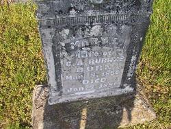 Mary Louise Luiley <i>Brumley</i> Burns