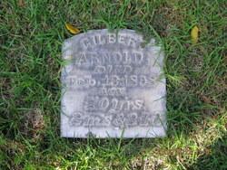 Gilbert Arnold