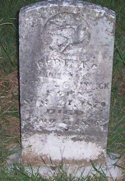 Bertha C. Kinnick