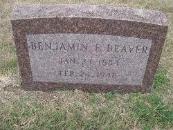Benjamin Franklin Beaver