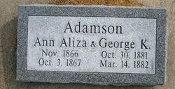 Ann Aliza Adamson