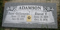 David T. Adamson