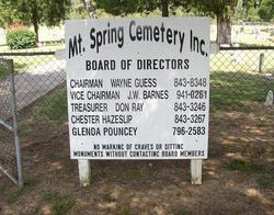 Mountain Springs Cemetery