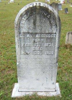 Elizabeth Catherine Eliza <i>Thomas</i> Aldridge