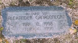 Alexander Lee Ganadonegro