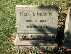 Mary E. Cornog