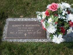 Albert V Kesteleyn