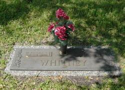 Gertrude Whitney