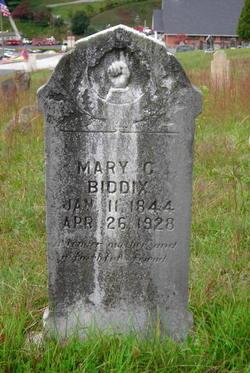 Mary C <i>Deweese</i> Biddix