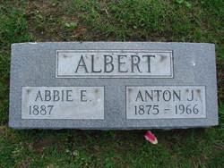 Anton J Albert