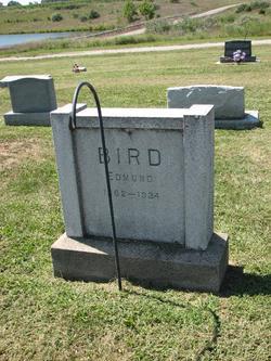 Edmund Bird