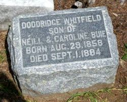 Doddridge Whitfield Buie