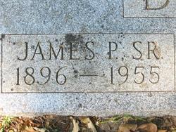 James Pickens Davie, Sr