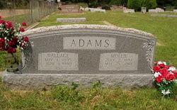 Mary Jane Mollie <i>Robbins</i> Adams