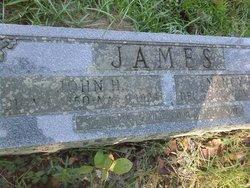 John Henry James