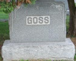 Wesley J Goss