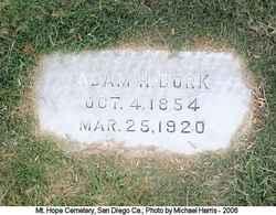 Adam H Bork