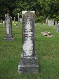 Mary D Baird